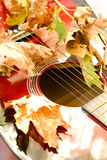 Classic guitar. Dry leaves fallen on a classic guitar Stock Images