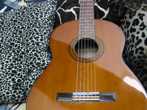 Classic Guitar Displayed with Jungle Prints Stock Image