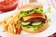 Classic hamburger with french fries Stock Photos