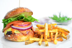 Classic hamburger with fries Stock Images