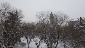 Garden park in Verona cover by snow. Classic image of snowing day stock video