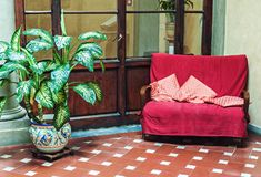 Classic interior with vintage couch and potted plant stock photo