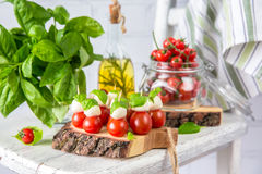 Classic Italian Caprese Canapes Salad With Tomatoes, Mozzarella And Fresh Basil Stock Image