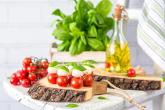 Classic Italian Caprese Canapes Salad With Tomatoes, Mozzarella And Fresh Basil royalty free stock image