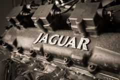 Classic Jaguar Enigine close up. Stock Photography