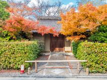 Classic Japanese style house. Exterior design of classic Japanese style house building with autumn leaves tree at front garden stock image