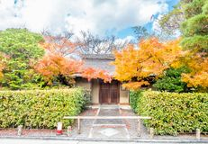 Classic Japanese style house. Exterior design of classic Japanese style house building with autumn leaves tree at front garden stock images