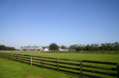 Classic Kentucky-style Horse Barn located in FL. Long shot of a white multi-stall horse barn surrounded by green pastures and brown plank fences. Farm is framed stock photo