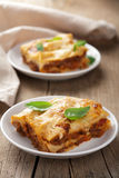 Classic lasagna bolognese Stock Image