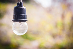 Classic light bulb lamp decor Stock Images