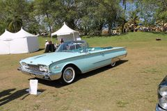 Classic luxury American convertible car on the lawn royalty free stock photography