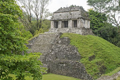 Classic Maya temple in Palenque Royalty Free Stock Photo