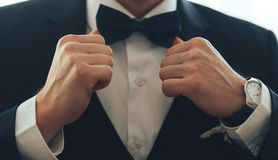 A man in a classic suit with a bow tie royalty free stock photo