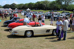 Classic mercedes benz cars at boca raton event Royalty Free Stock Images