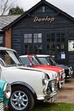 Classic mini cars at the 2017 Brooklands mini day event. Royalty Free Stock Image