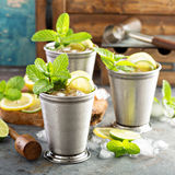 Classic mint julep cocktail. With lime and lemon Royalty Free Stock Photography