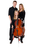 Classic music trio on white background Royalty Free Stock Photography