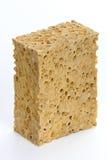 Classic natural sponge Stock Image
