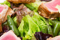 Classic nicoise salad closeup. Royalty Free Stock Images