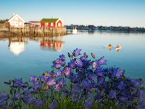 Classic Norway view stock photo