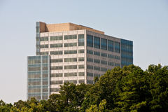 Classic Office Building Rising From Trees Stock Image