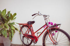 Classic old bicycle decorated Stock Images