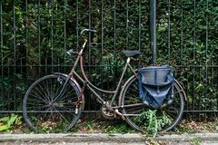 Classic old bike in the bushes in amsterdam Stock Photography