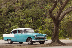 Classic old car under a tree in Cuba Royalty Free Stock Images