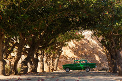 Classic old car under trees in Cuba Royalty Free Stock Photo