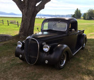 Classic old pickup parked under shade tree in grass by lake Stock Photos
