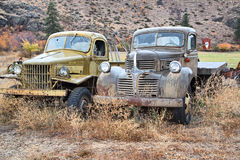 Classic Old Pickup Trucks. A pair of old american classic pickup trucks parked in a field Stock Photography