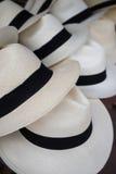Classic panama hats closeup Stock Image