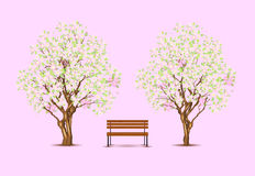 Classic park scene, vector trees and bench Stock Photography