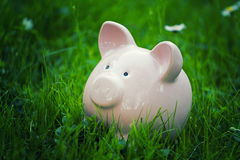 Classic piggy bank Royalty Free Stock Image
