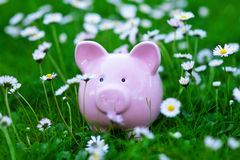Classic piggy bank Royalty Free Stock Photo