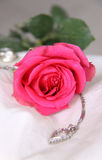 Classic Pink Rose and jewelry Stock Images