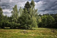 Classic Polish landscape Royalty Free Stock Image