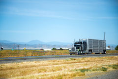 Classic reach black custom build semi truck with trailer for tra. An attractive black stylish big rig semi truck with high tailpipes and a large aluminum trailer Royalty Free Stock Photos