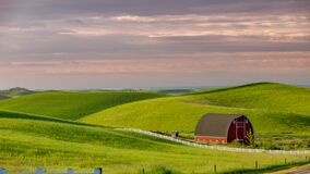 Free Classic Red Barn In The Rolling Hills Of The Idaho Palouse Country Royalty Free Stock Photography - 190259577