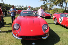 Classic red Ferrari front lineup Royalty Free Stock Images
