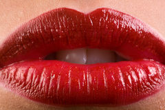 Classic Red Lipstick. Closeup of Beautiful Red Lipstick on Perfect Lips Royalty Free Stock Images