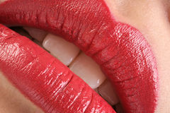 Classic Red Lipstick Stock Images