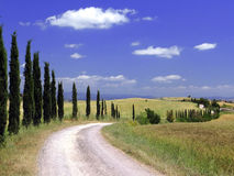 Tuscan road 02 Royalty Free Stock Photos