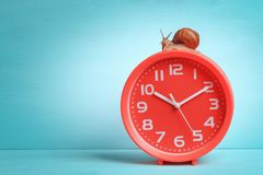 Classic round red clock with a snail on top. Concept time, slow, waiting, slowly royalty free stock photography