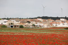 Classic rural Spain - red poppy field and small town Stock Photo