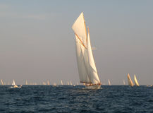 Classic sailing yacht. Classic historic sailing yachts in regatta at voiles de St-Tropez 2009 Royalty Free Stock Photography