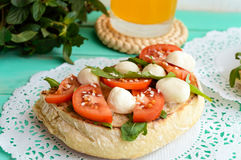 Classic sandwich with mozzarella, fresh tomatoes, arugula and sesame seeds on toast. Stock Photography