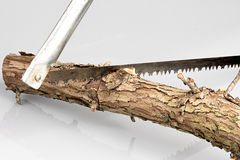 Classic saw cutting a small log Royalty Free Stock Image