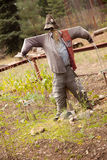 Classic Scarecrow and Quaint Garden Royalty Free Stock Image