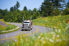 Classic semi truck big rig carrying lumber on highway. Bir Rig classic style truck with two chrome tailpipes on the bend in the road, carrying logs lumber on the Royalty Free Stock Image